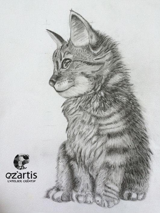 Ozartis La Rochelle Dessin Chat Alison Oz Artis